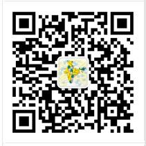印度代购微信二维码